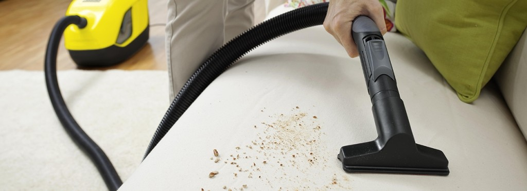 upholstery_cleaning_header